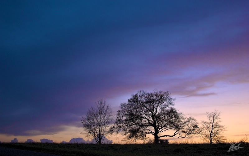 Farthing Downs Sunset 6 WP by andy1349