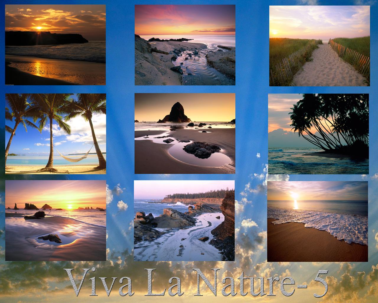 Viva La Nature Wallpaper Pack5 by GeekGod4