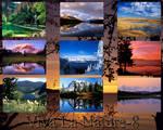 Viva La Nature Wallpaper pack8