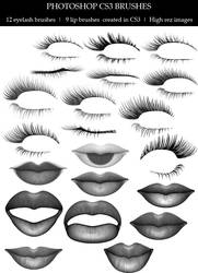 Lips and Lashes brushes by lilnymph