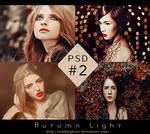 Psd #2 - Autumn Light