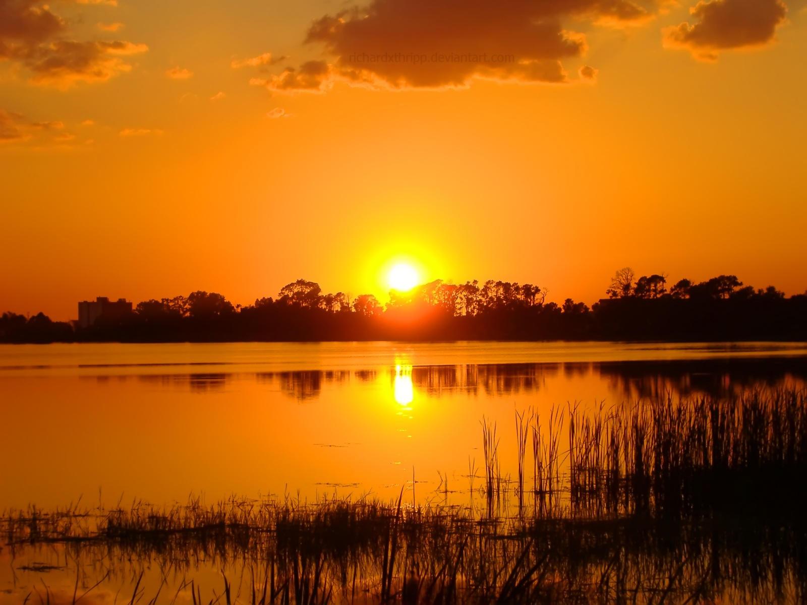 Fiery Orange Sunset Wallpaper by richardxthripp