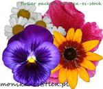 flower pack psd