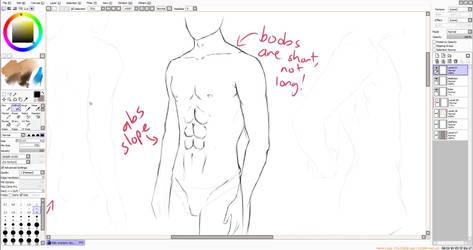 [VIDEO] - Male Anatomy Tutorial