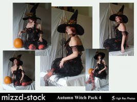 Autumn Witch Pack 4 by mizzd-stock