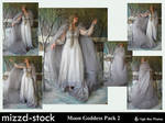 Moon Goddess pack 2 by mizzd-stock