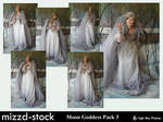Moon Goddess Pack 3 by mizzd-stock
