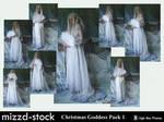 Christmas Goddess Pack 1