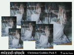 Christmas Goddess pack 5 by mizzd-stock