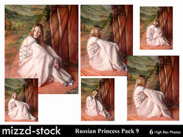 Elven Princess Pack 9 by mizzd-stock