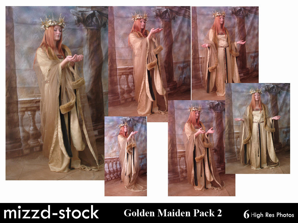 Golden Maiden Pack 2 by mizzd-stock