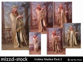 Golden Maiden Pack 2 by mizzd-stock