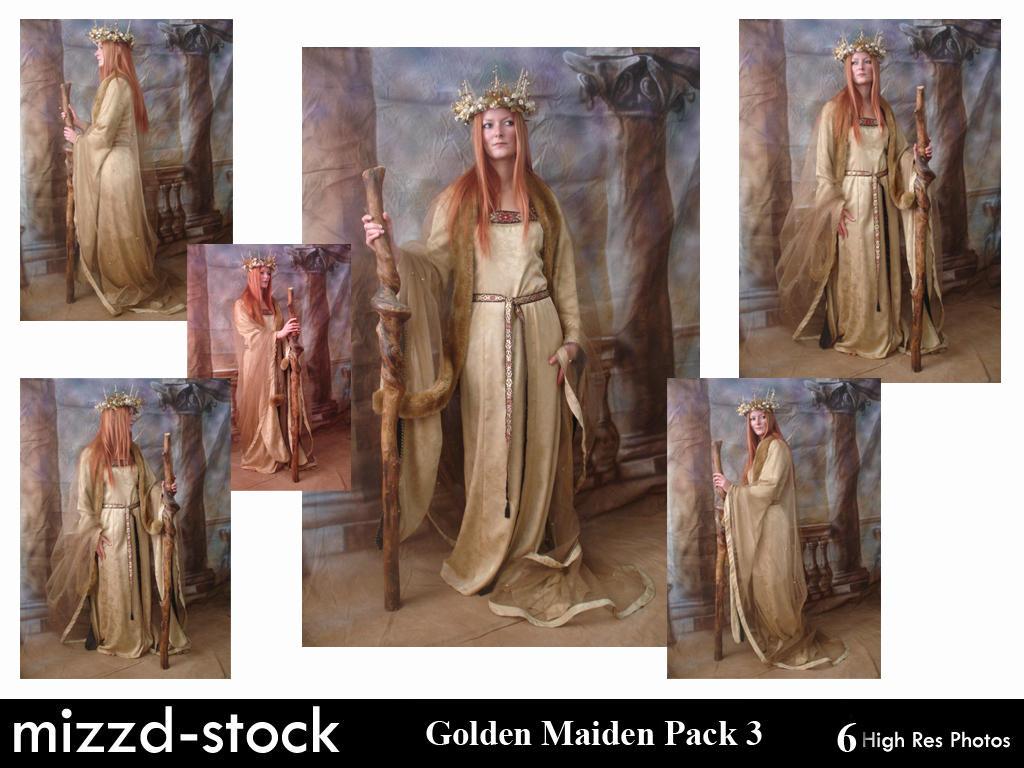 Golden Maiden Pack 3 by mizzd-stock