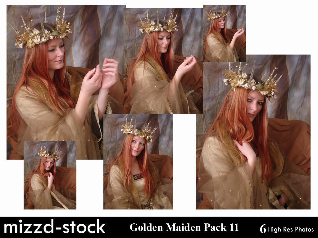 Golden Maiden Portrait Pack 2 by mizzd-stock