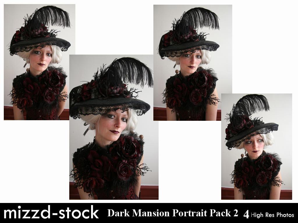 Dark Mansion Portrait Pack 2 by mizzd-stock