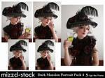 Dark Mansion Portrait Pack 4