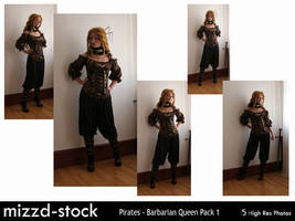 Pirates - Barbarian Queen Pack 1 by mizzd-stock