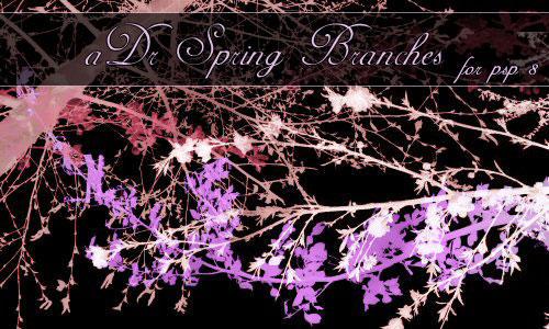 aDr Spring Branches by ashadevirasa