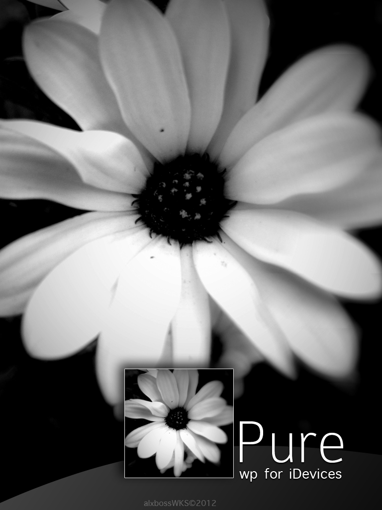 Pure by alxboss