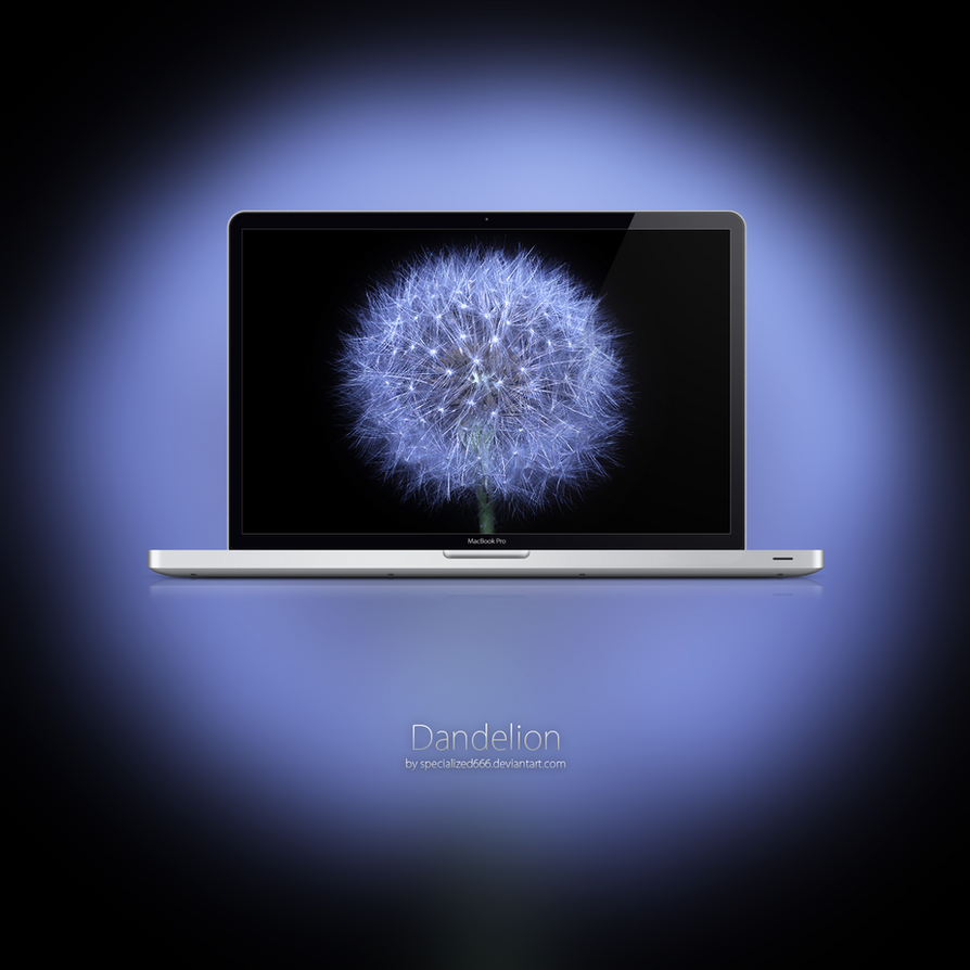 Dandelion by specialized666