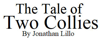 The Tales of Two Collies