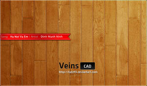 Veins for CAD