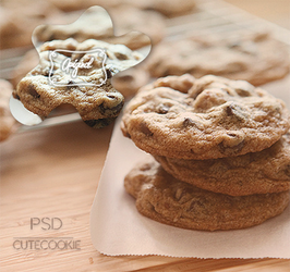 Cute cookie .psd coloring by LittlePrettyFlowers