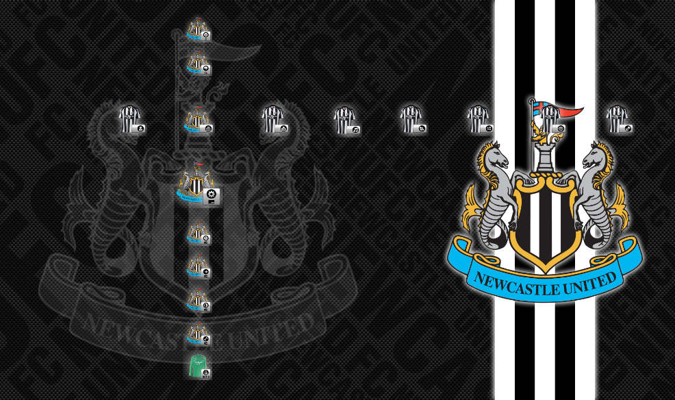 Newcastle FC 2010-2011 By AdyP On DeviantArt