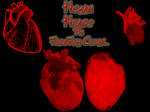 Human Heart PS Brushes