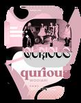 QURIOUS   FONT