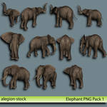 Elephant PNG Stock Pack 1