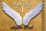 Angel Wings 1 PNG Stock