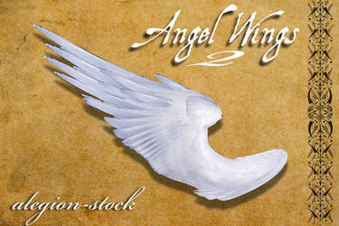 Angel Wings 2 PNG Stock
