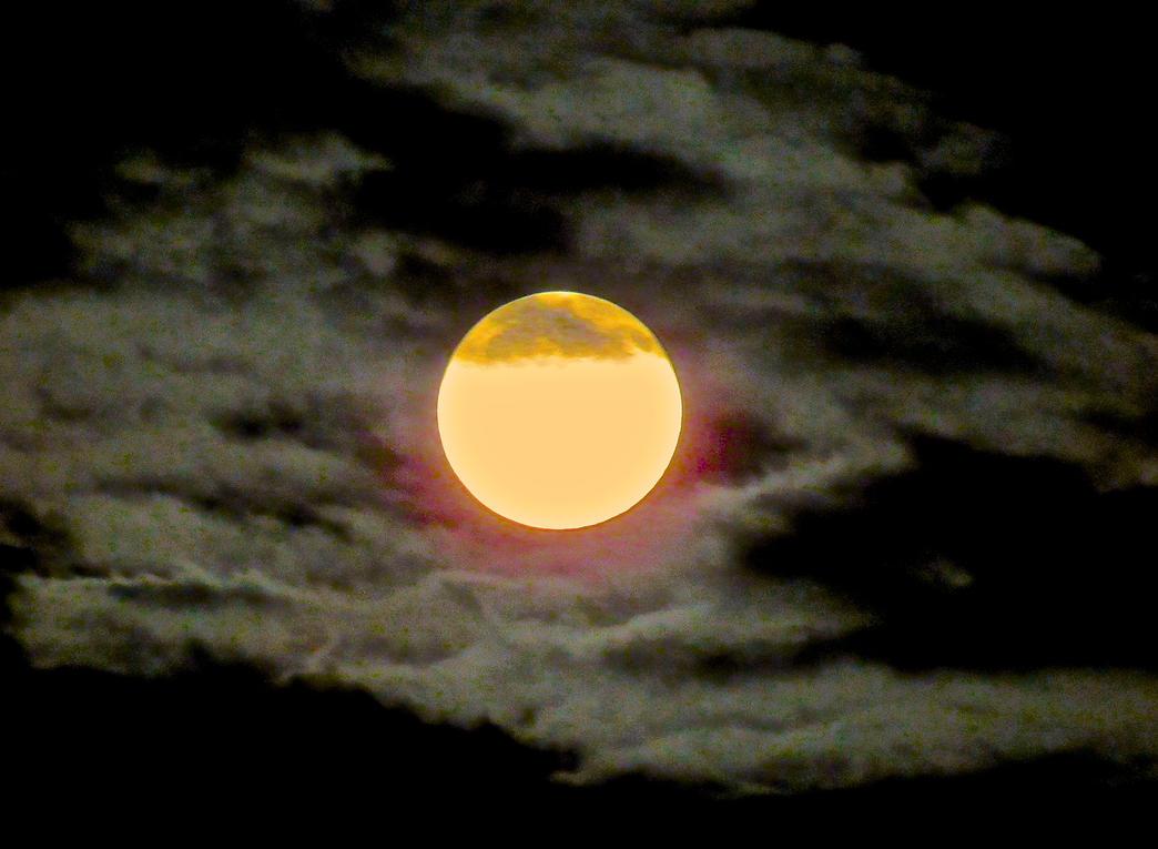 Spooky Moon by WagmoreBarkless