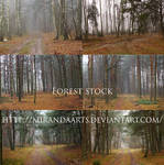 Forest stock pack...