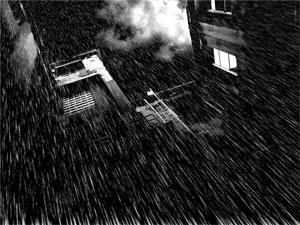 Noir Rain