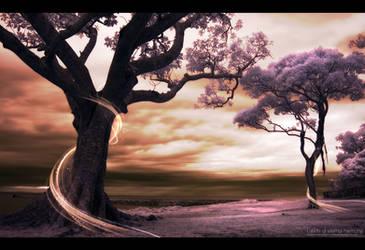 Lands of eternal Harmony. by Uribaani