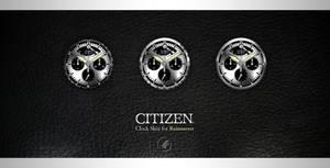 Citizen -Clock skin.