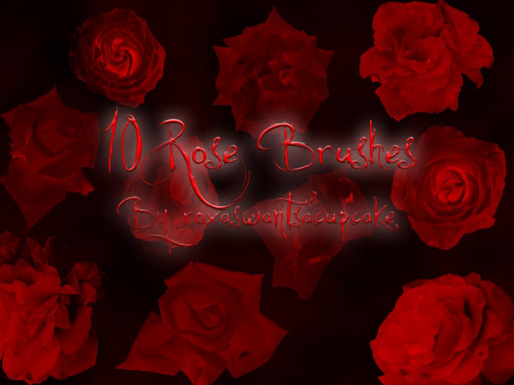 Rose Brushes by roxaswantsacupcake