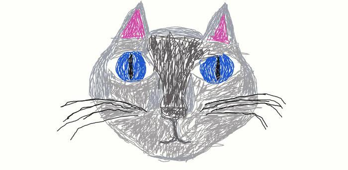 Cat gift.