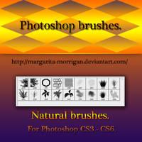Natural Brushes By Margaritamorrigan