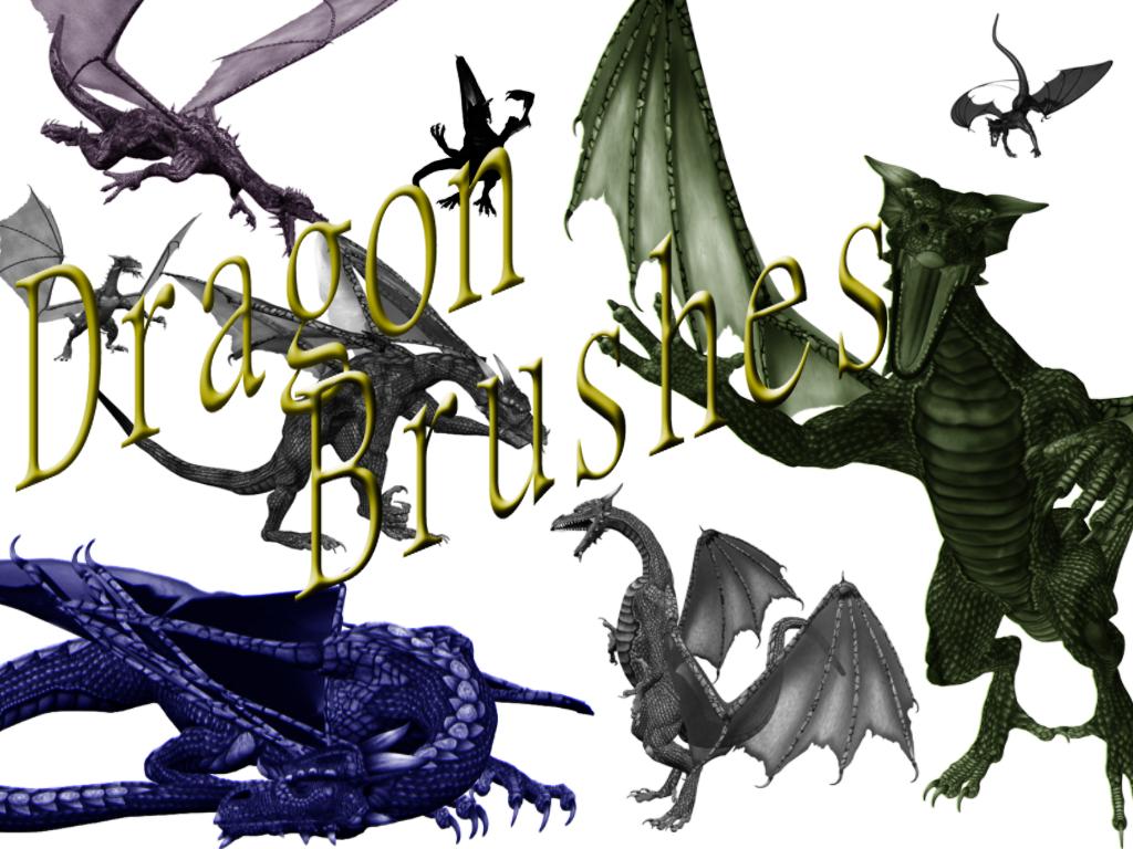Dragon Brushes by nara6200