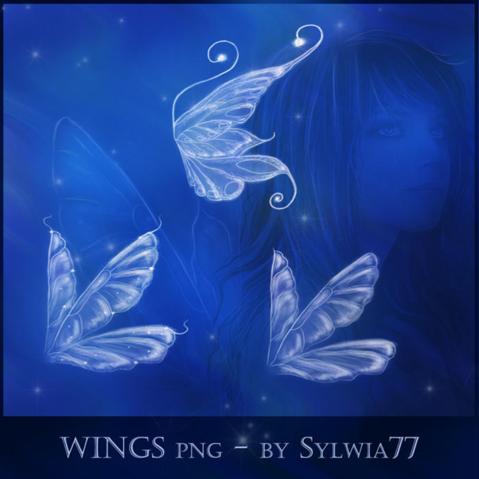 Wings png by Sylwia77