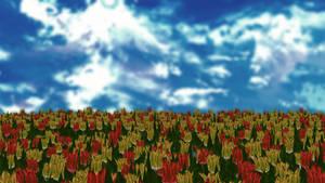 Tulip stage(bicoloured)
