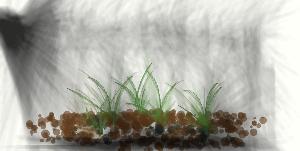 Grim Looking Grass by ThorWedd