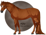 Cute Pon [F2U]