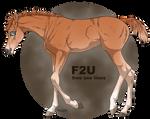 Little Foal [F2U]