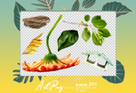 PNG PACK 301 by ARTPNG