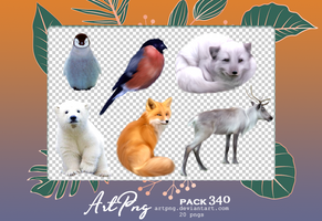 PNG PACK 340