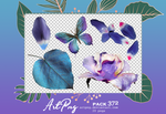 PNG PACK 372